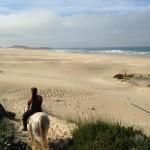 HORSE TREK BEACH