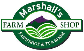 marshals logo best