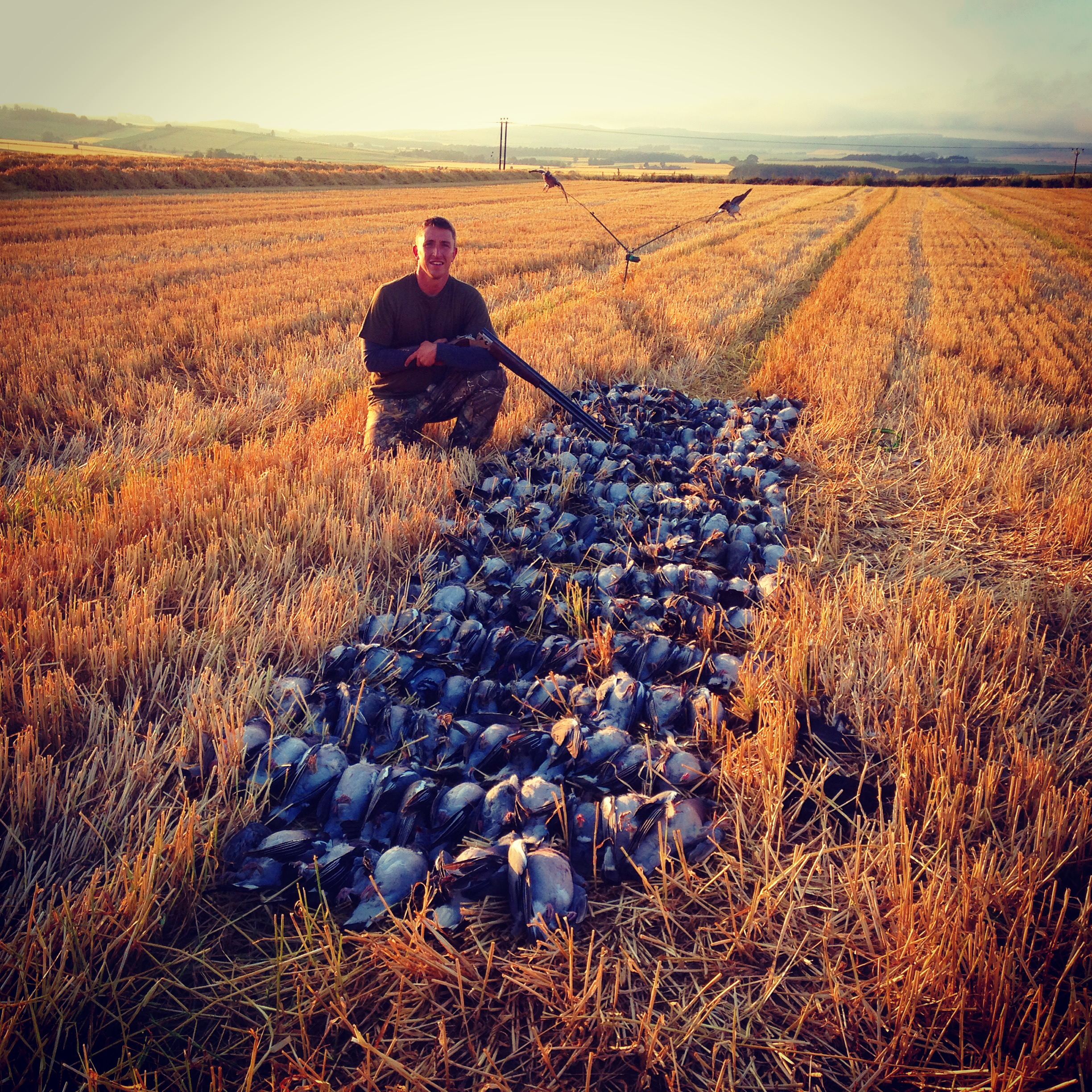 Pigeon Short Stay – 3 Days Hunting |